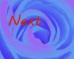 sof-next